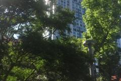 유성구 온천로 59 동아벤처타워1305호 전경사진